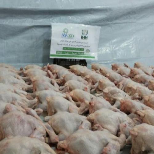 Tavuk Çiftliği Kampanyası