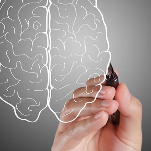 Psikolojik Destek (Duygusal Zeka) Alanında Eğitmenler Yetiştirme Kampanyası